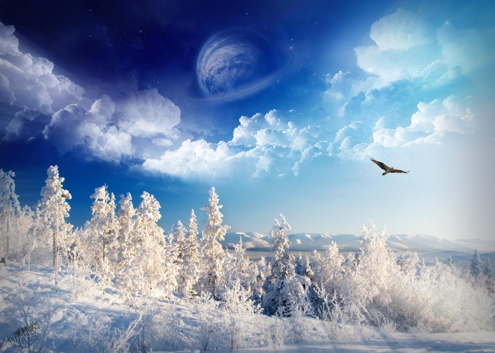 Зима 1600 x 1142
