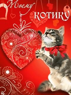 Котик я тебя люблю открытка 32