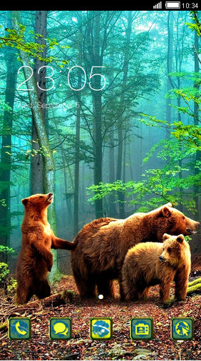 3 bear in the woods