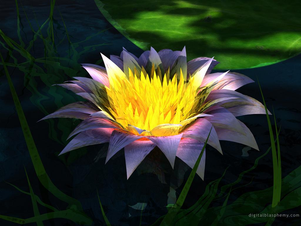 Сказочные цветы картинки 4