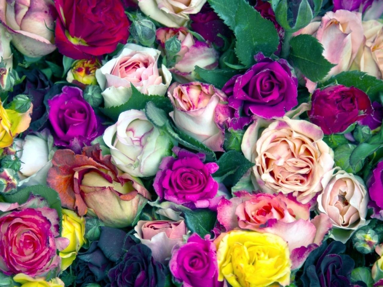 Картинки цветы вырезать 6