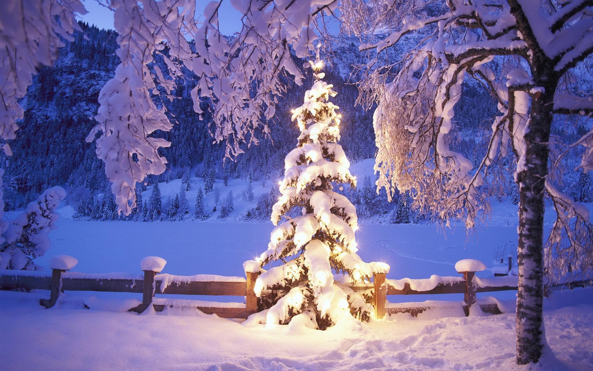 зима картинки для рабочего стола: