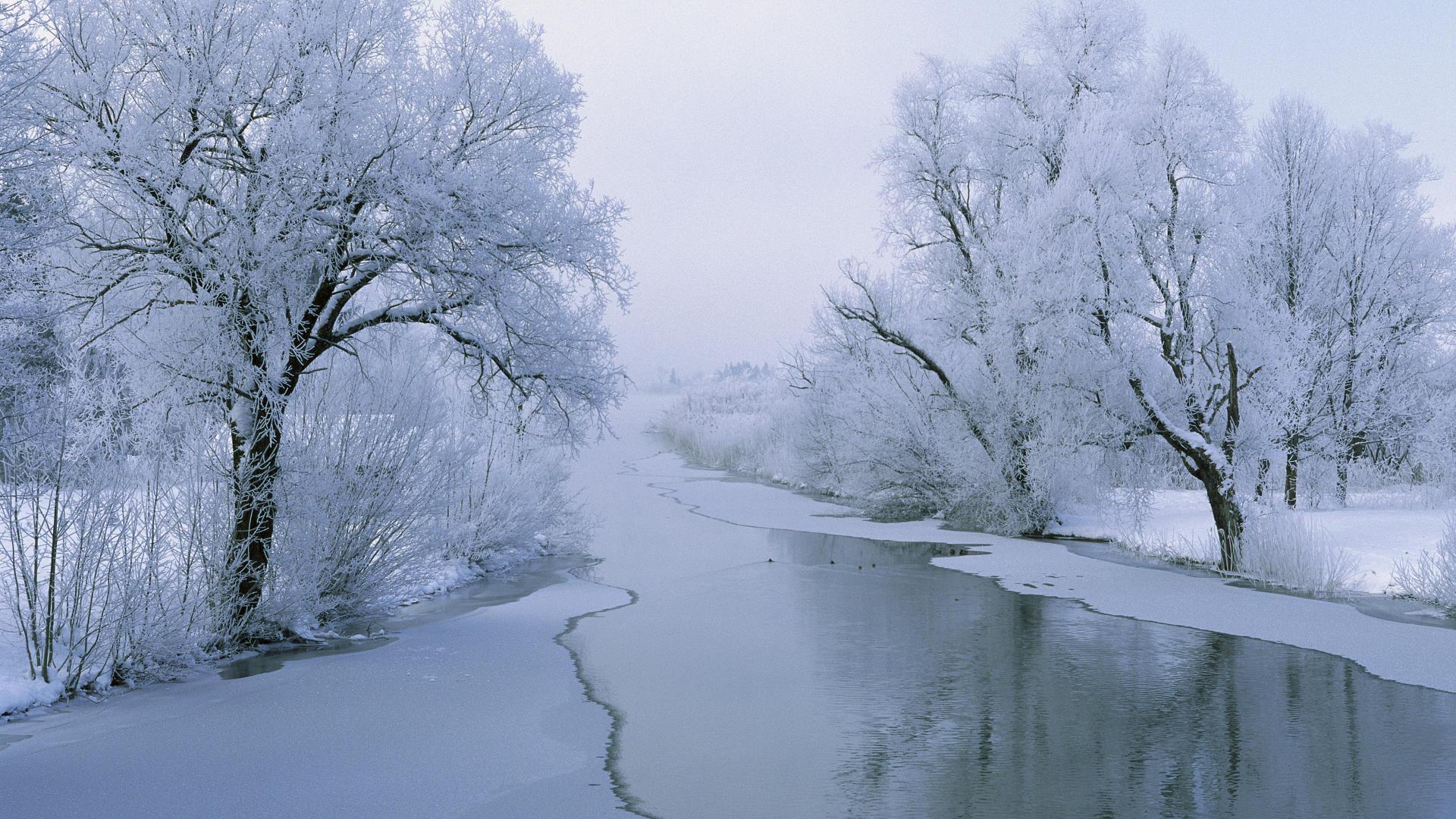 Зима обои на рабочий стол 1920x1080 №727750