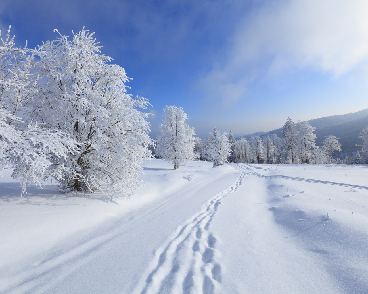 на рабочий зима