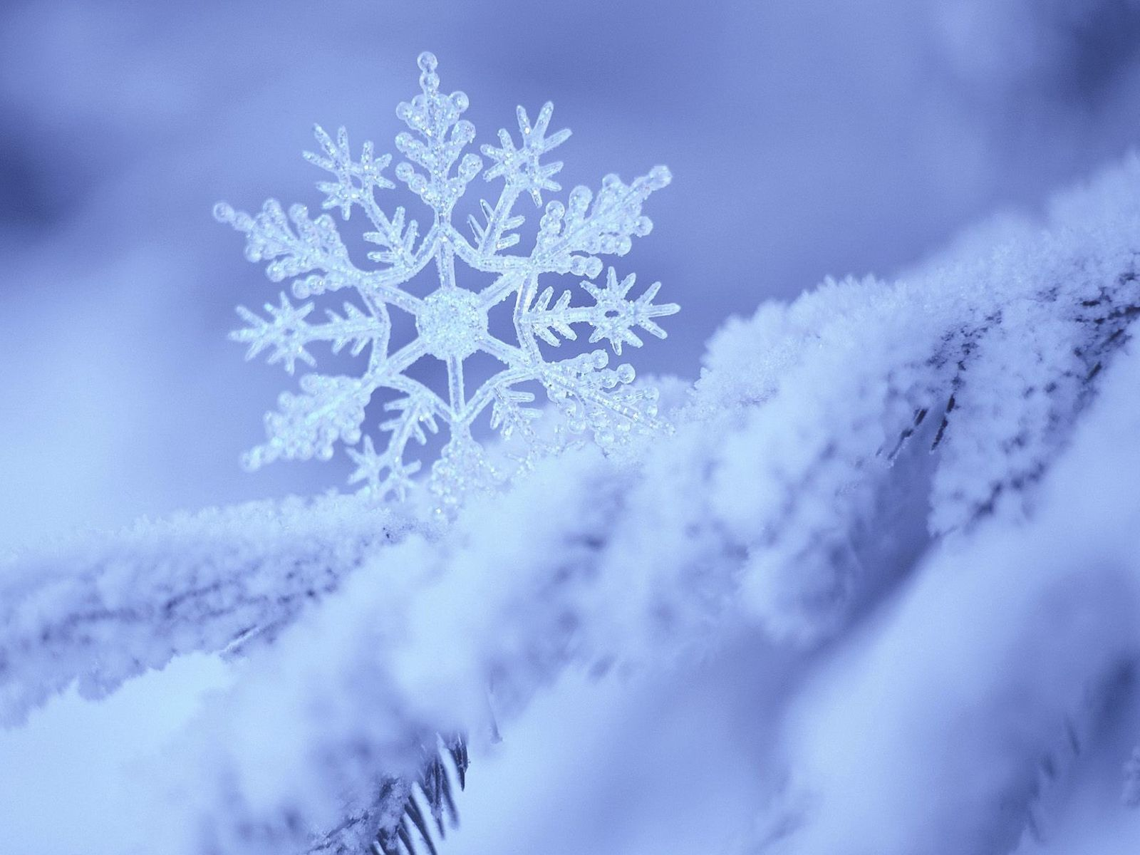 Снежинка 1600 x 1200