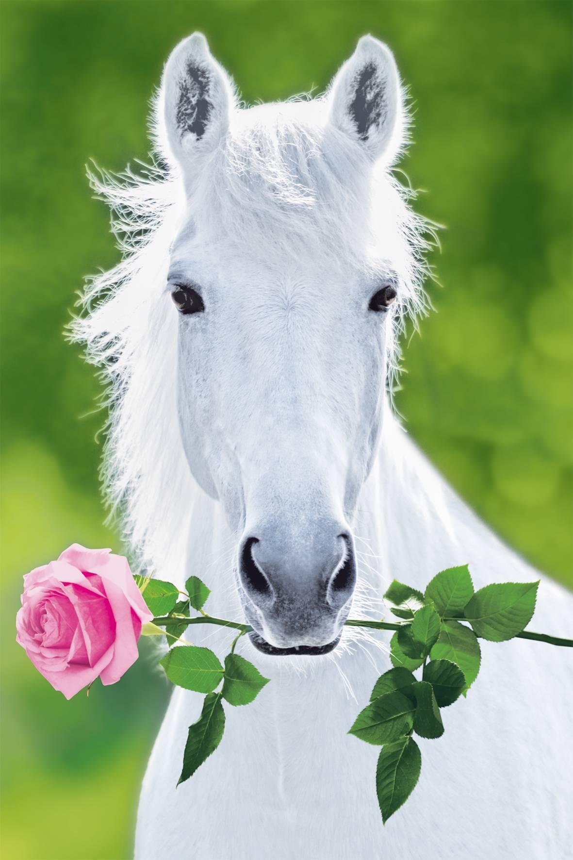 Лошадь с цветами в зубах фото