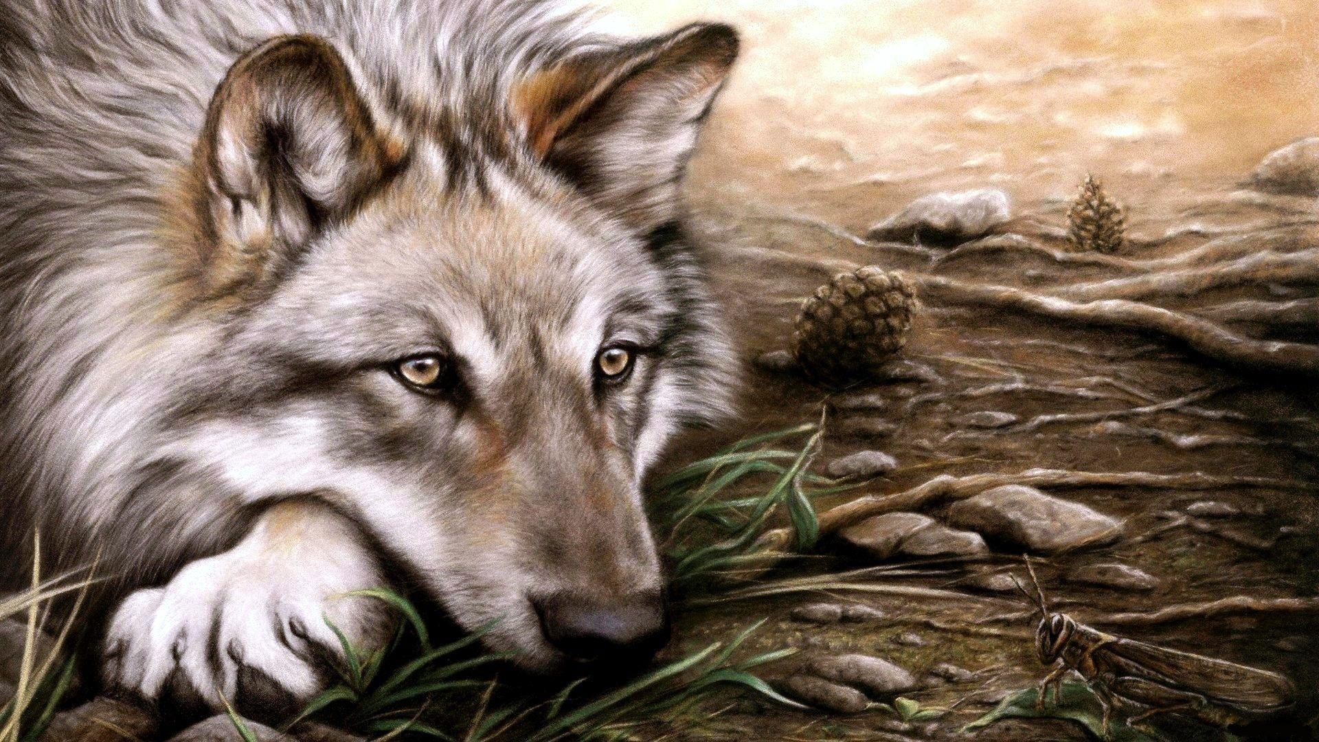 Волк 1920 x 1080