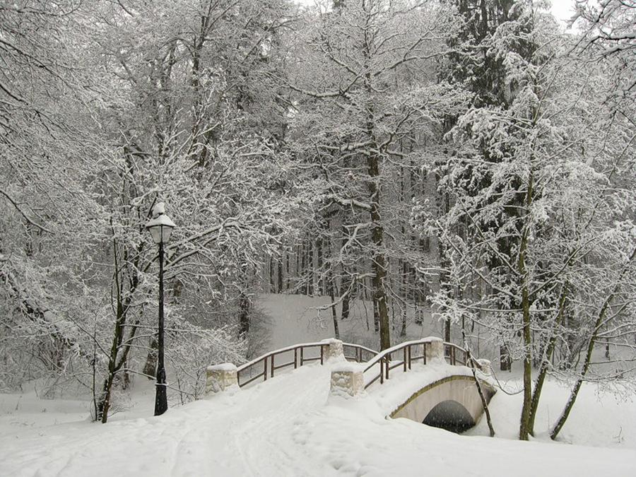А снег идет. Москва, парк Царицыно. 18 февраля 2009 г. - ФОТ…