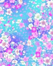 Rozovo-golubye cvety