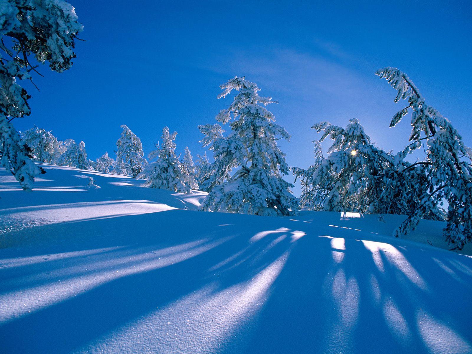 Зимняя природа 1600 x 1200