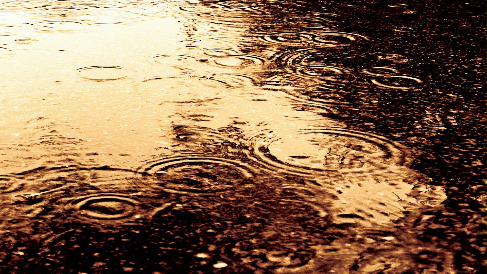 Смотреть золотой дождь на айфон без регистрации 12 фотография