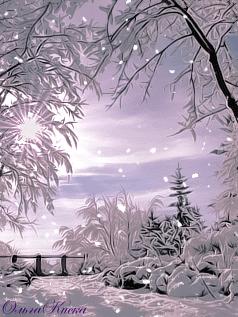 Krasota zimy