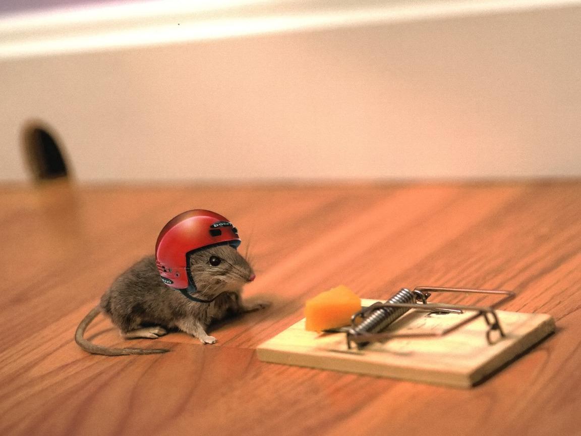 Умная мышка