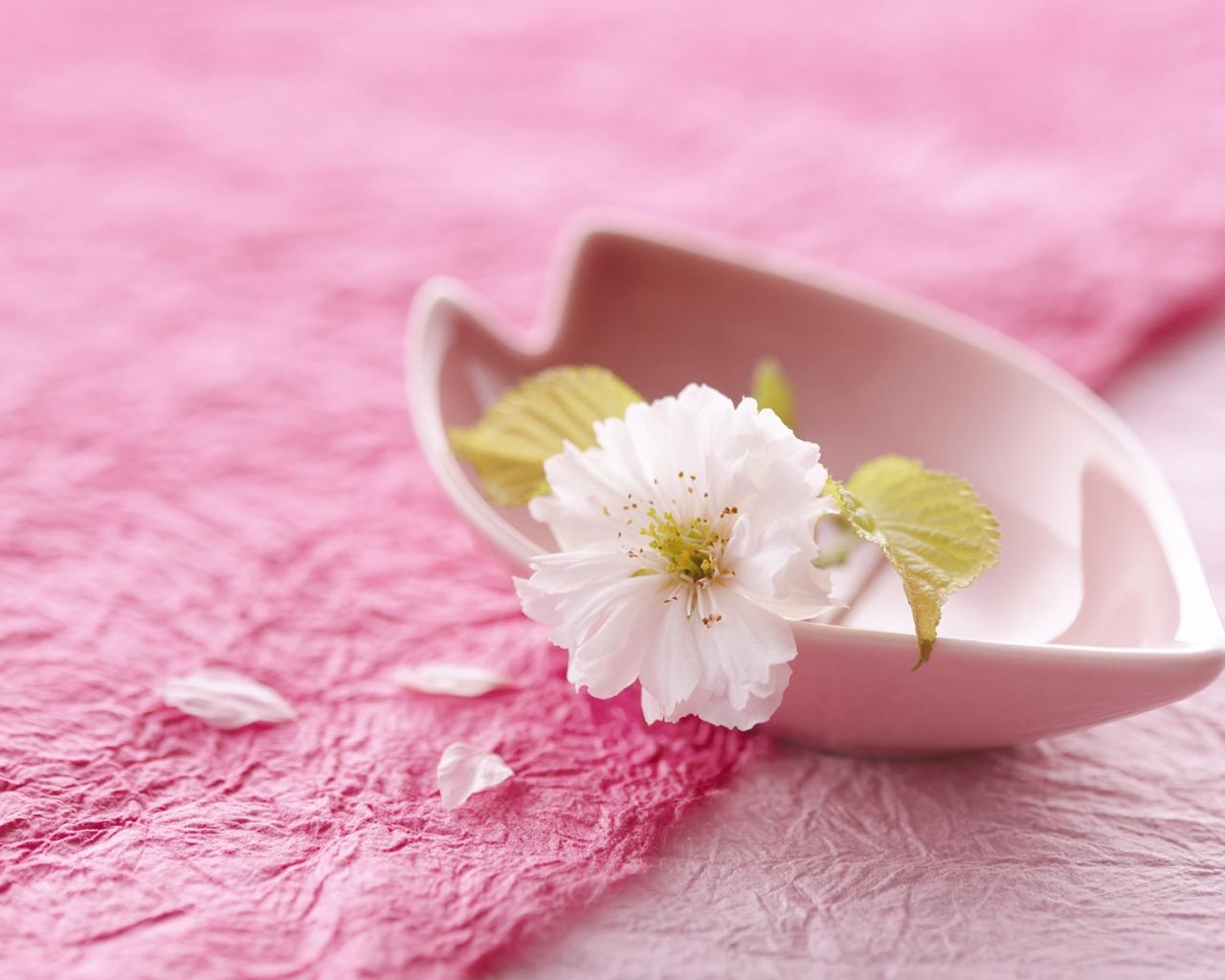 Конверт с цветами Распечатать Готовые образцы 8 марта