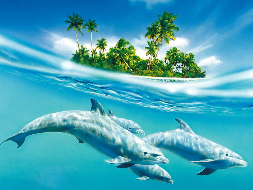 остров рисунок: