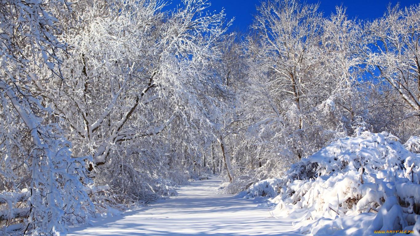 Картинки с зимой 1366х768