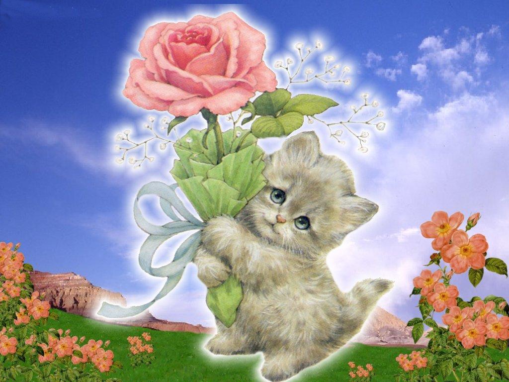 Открытки котенок