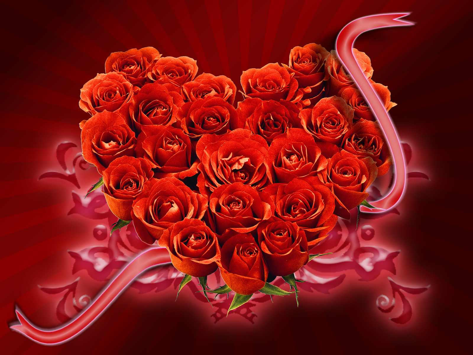 розы фотообои на рабочий стол: