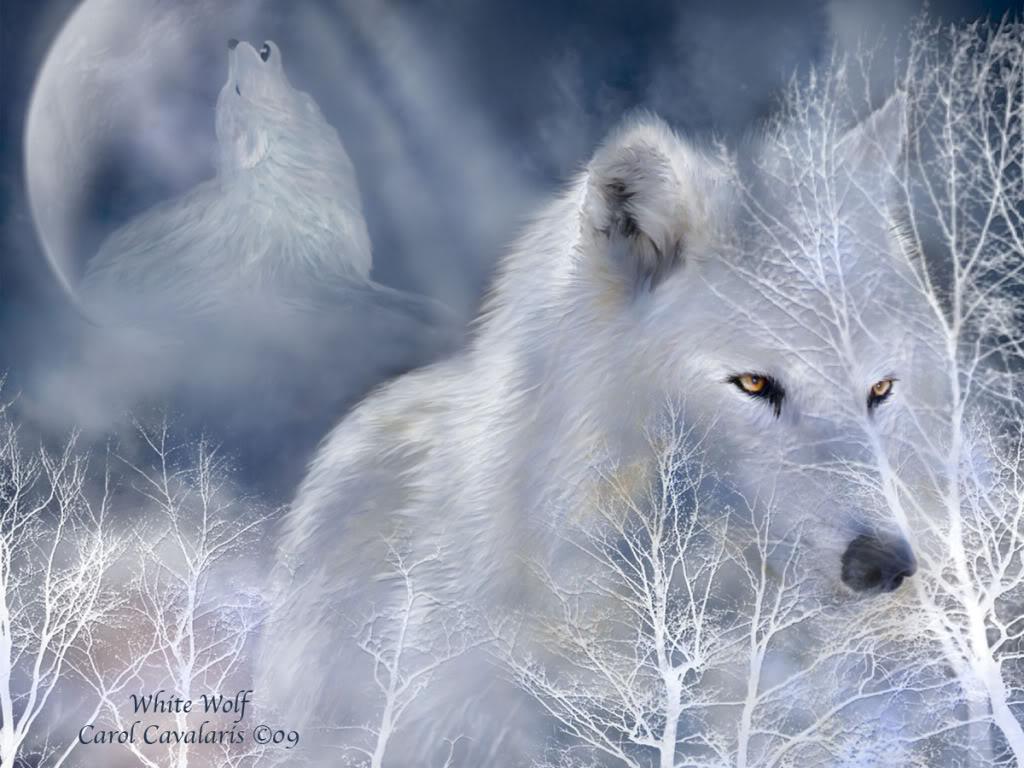 Волки 1024 x 768...
