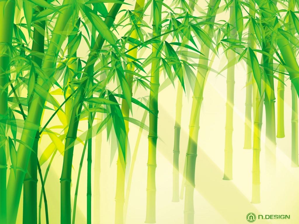 Бамбук 1024 x 768
