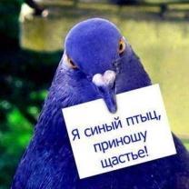 http://file.mobilmusic.ru/8b/b2/f0/851696-208.jpg