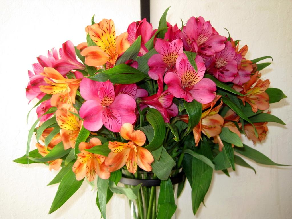 Букет цветок картинки 7