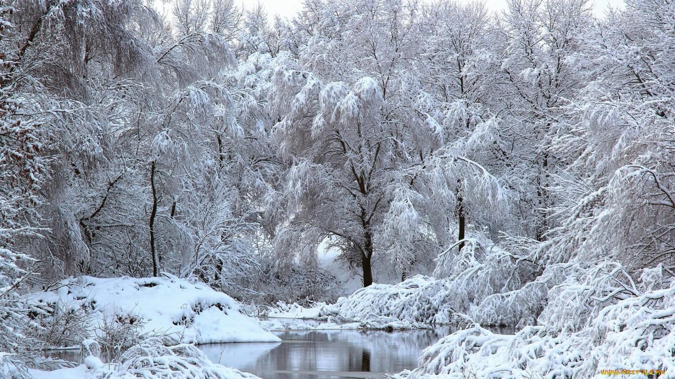 Зима в городе фото красивые