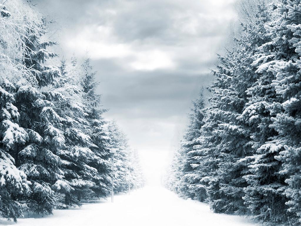 Зима 1024 x 768
