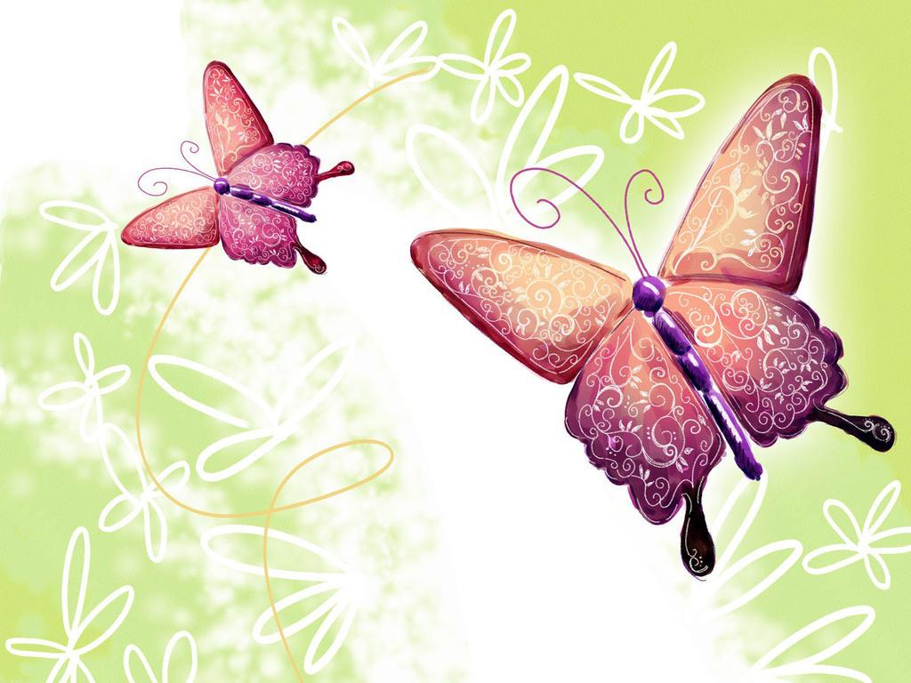 Бабочки 1024 x 768