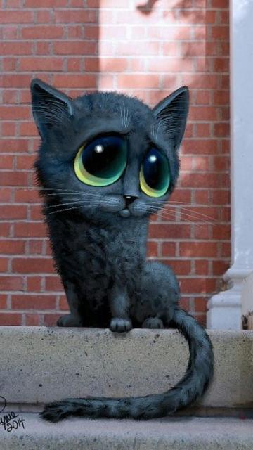 плачущий котенок картинки