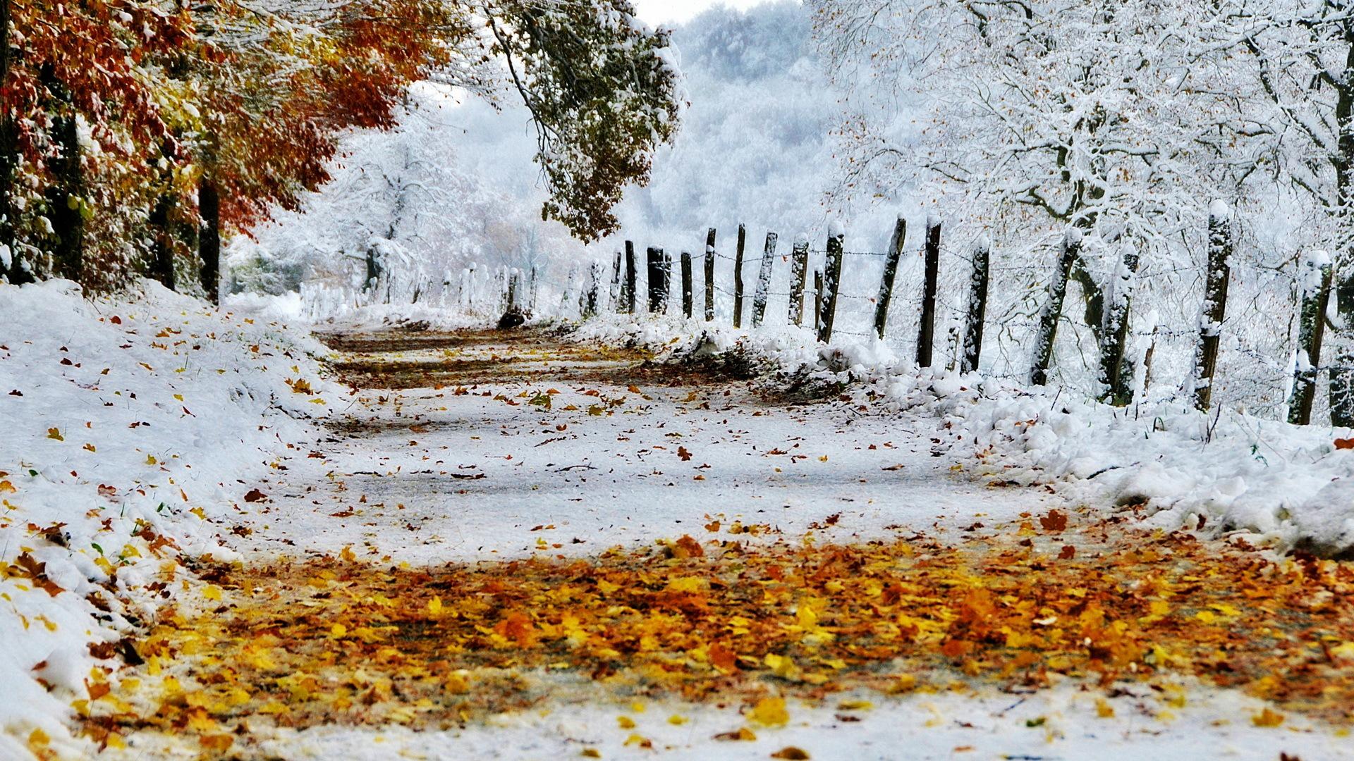 Картинки для рабочего стола зима осень