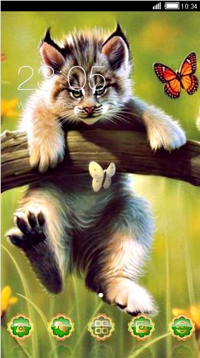 Kittens lynx