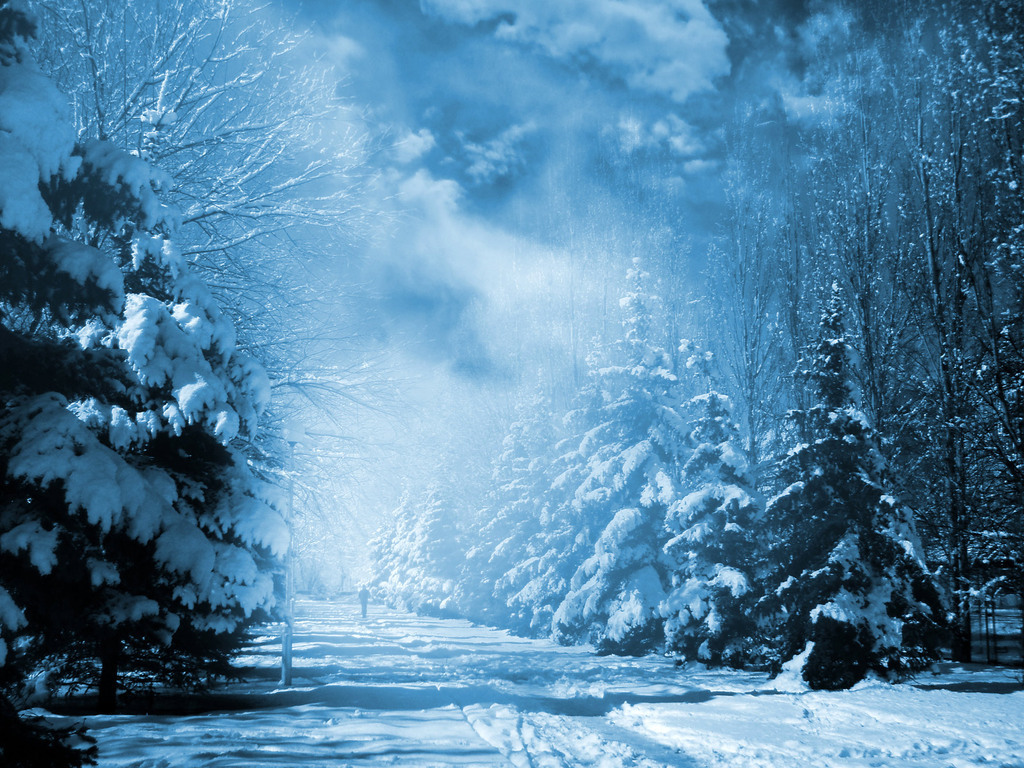 Зима обои на рабочий стол 1024x768 №740577