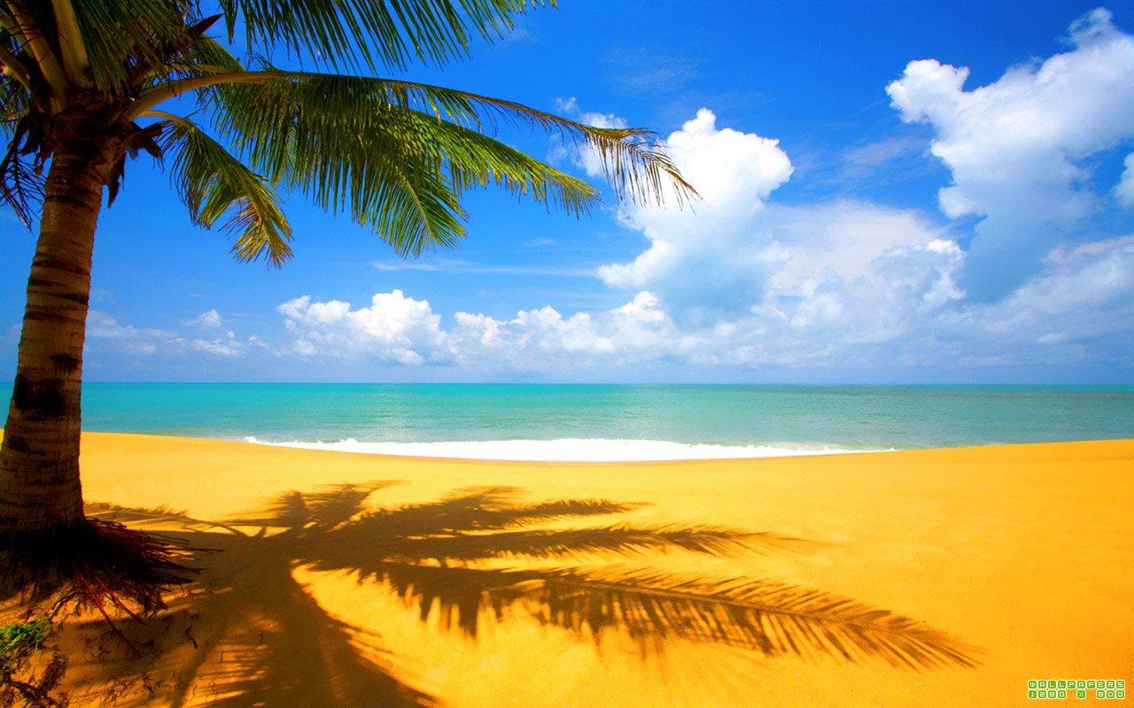 Пляж 1280 x 800