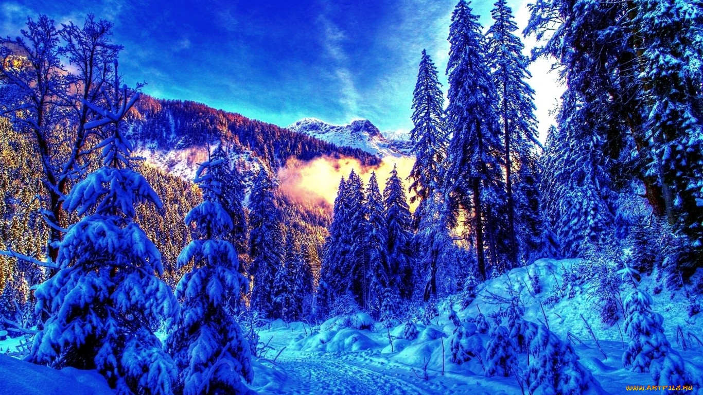 Картинки на рабочий стол компа зима