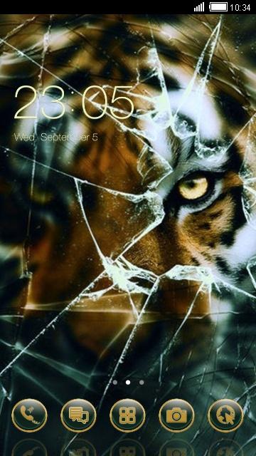 Тигр у разбитого стекла