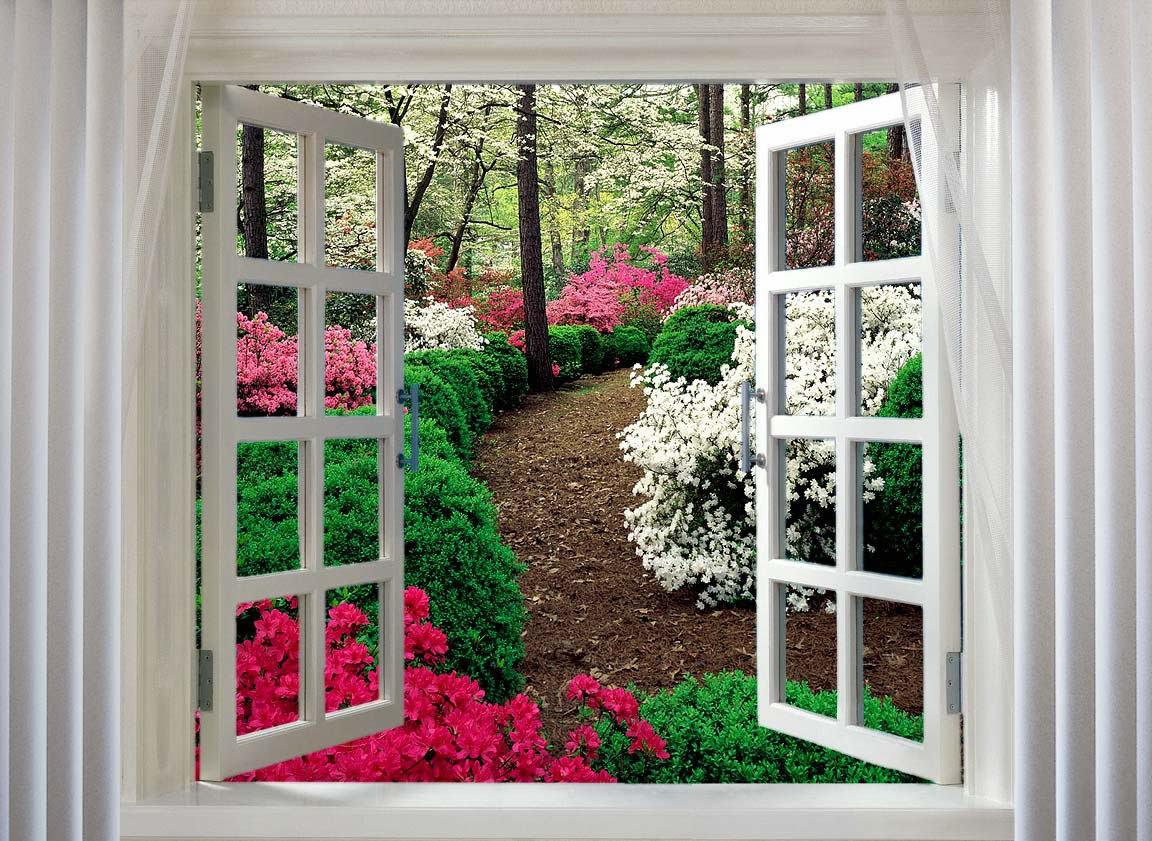 3д окна фото