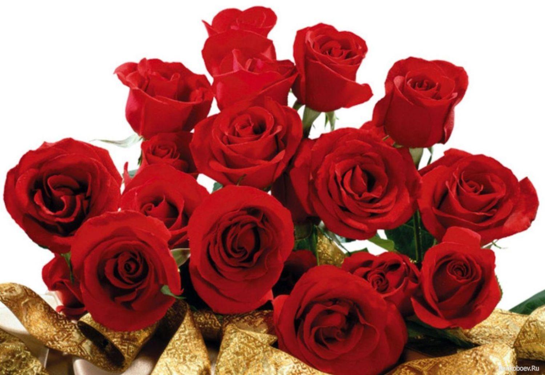 Красивые розы обои на рабочий стол