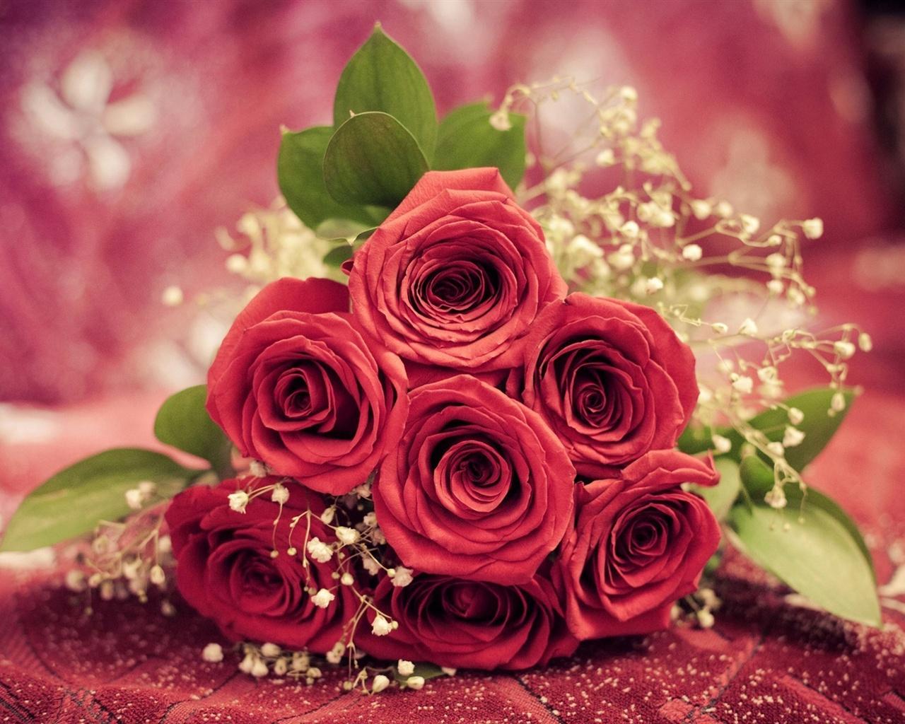 Обои розы на рабочий стол широкоформатные - a348
